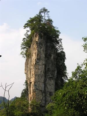 后乘车约一个半小时抵达 【油杉河风景区】 (含景区电瓶车)前往仙宇屯